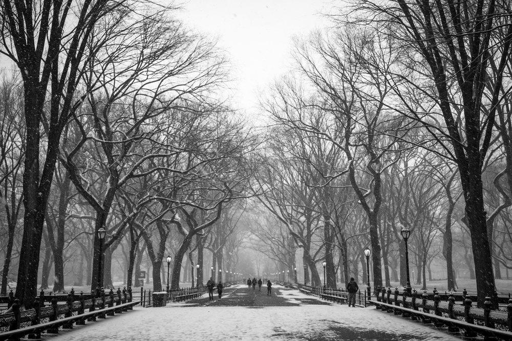 NYC Winter 2017 - 5044