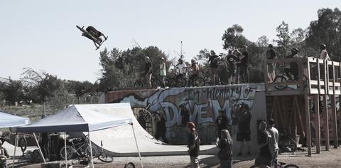 2_Feb_20th_Dave_Mirra_large.jpg
