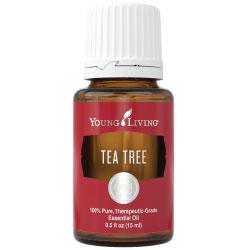 tree tea essential oil