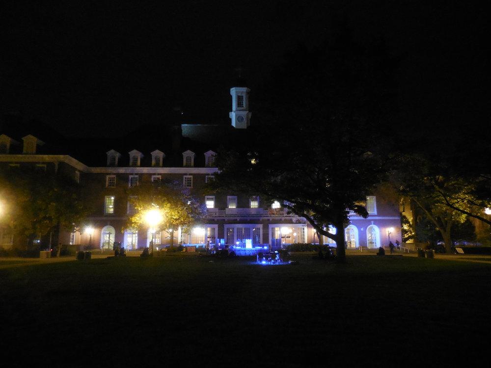 Copy of IL union at night.JPG