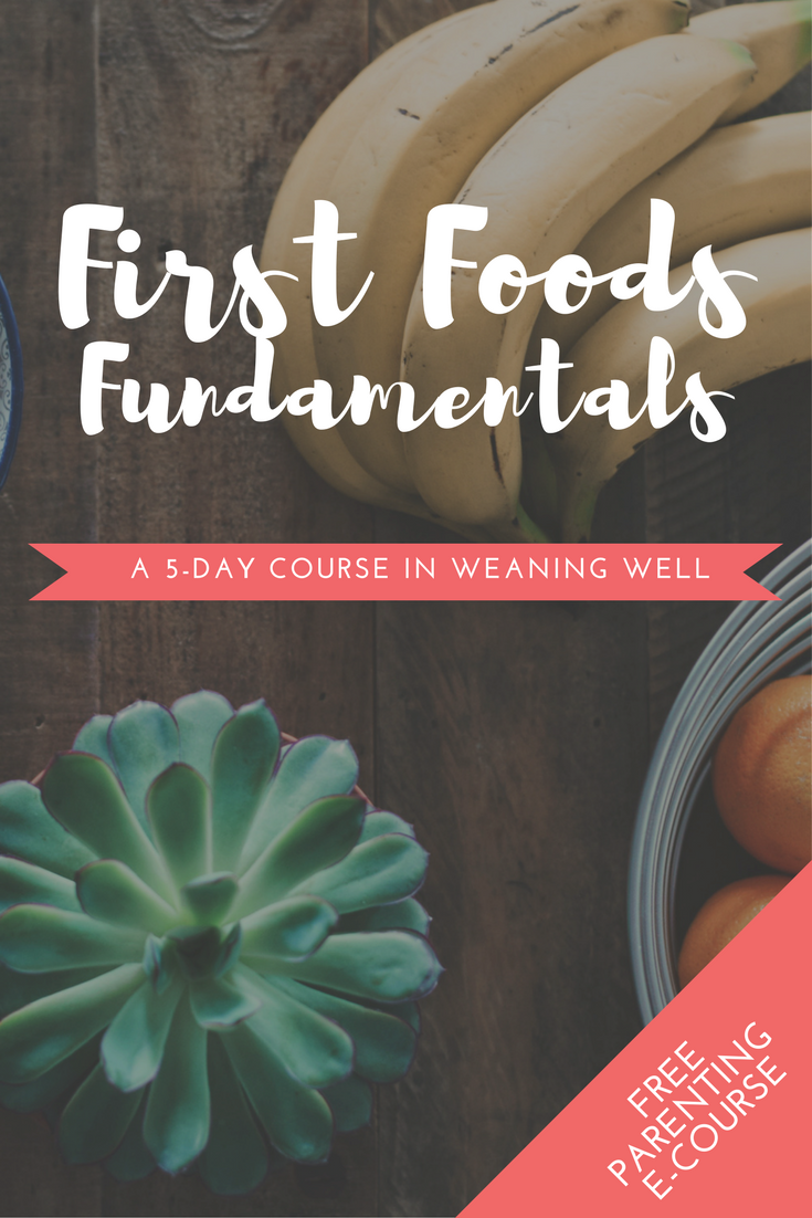 First Foods Fundamentals is a five-day online baby-led weaning course. Sign up to learn BLW with daily lessons delivered straight to your inbox.