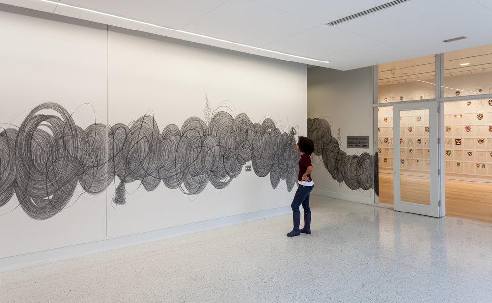 Jorge Pineda Installation19.jpg