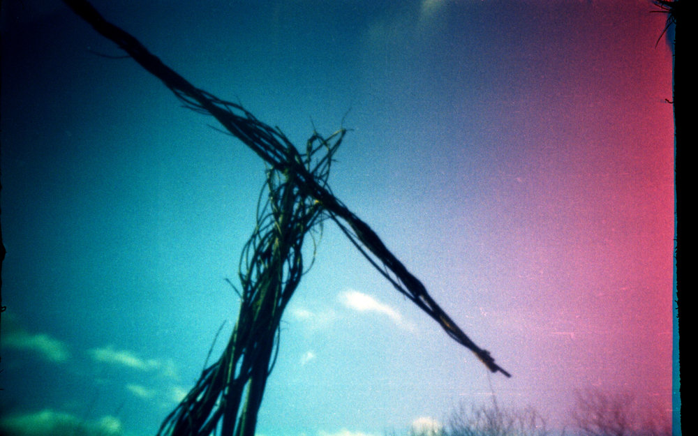 Willow man. Matchbox Camera - Fuji C200