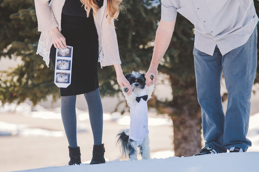 Infertility Success - After struggling with infertility and over a year of treatments, we got pregnant with our son, Charlie. We now have a family of five (two puppies), one human baby and are working on getting to the bottom of our unexplained infertility. Read our journey of treatments, raw emotions and the new discoveries since giving birth.