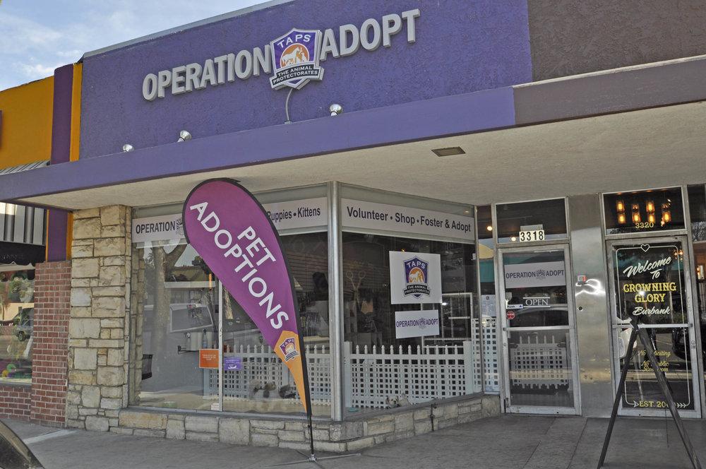 Operation Adopt.jpg
