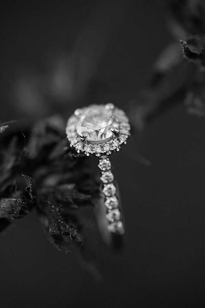 golden-autumn-outdoor-engagement-nashville-wedding-photographer_0035