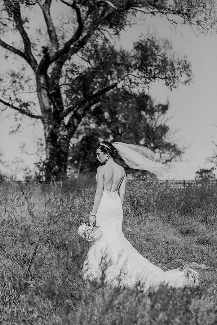 plein-air-belle-meadows-farm-wedding-nashville-wedding-photographer_0037