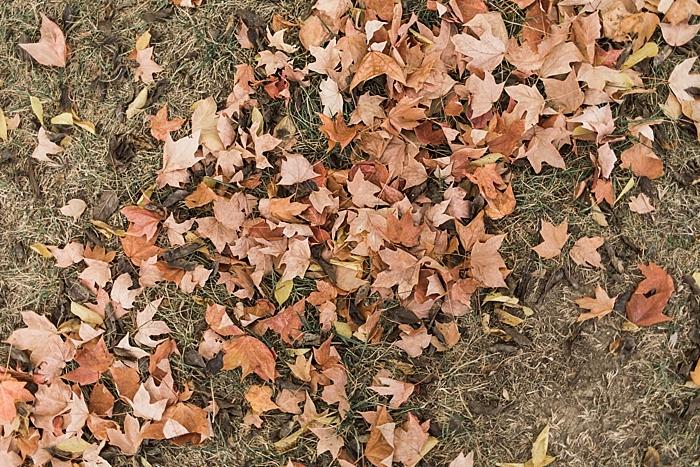preppy-autumn-cordelle-wedding-nashville-wedding-photographer_0105