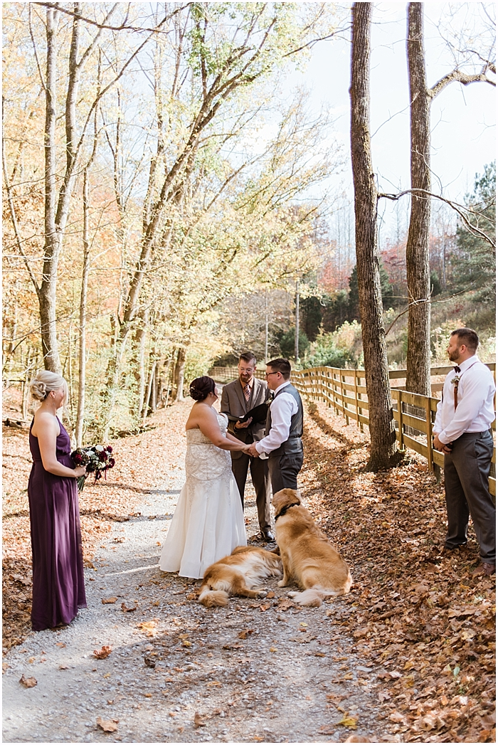 leipers-fork-airbnb-elopement_0069