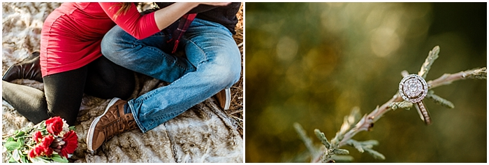SarahSidwellPhotography_country cover christmas tree farms_ nashville engagement photographer_0023a.jpg