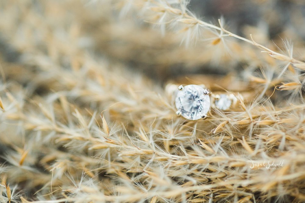 An engagement ring lays in a field.