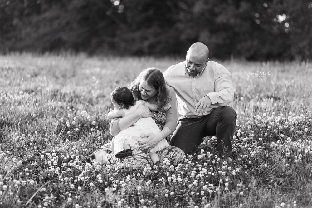 Parents kneel with their toddler as she explores a field of flowers.
