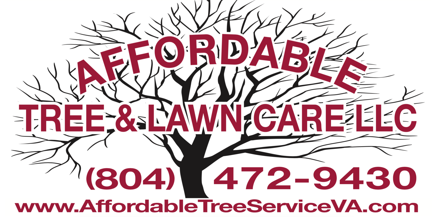Affordable Tree and Lawn Care