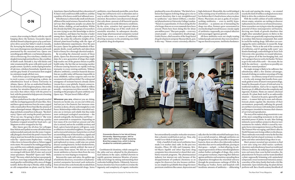 One of the greatest human threats today is the fact that an increasing number of disease-causing bacteria are becoming immune to every existing antibiotic. Dr. Cassandra Quave of Emory University believes that uniting traditional plant based healing with modern laboratory experiments may hold the answer to the future crisis. For The New York Times Magazine.