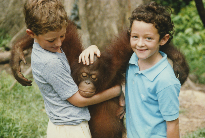Me and brother with an orangutan, Borneo .