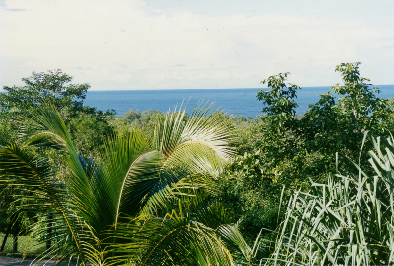 The view of the South China Sea from our house in Brunei