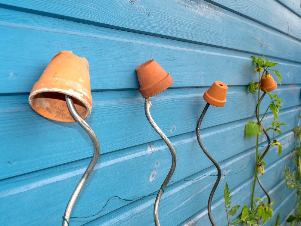 Gartencoaching -