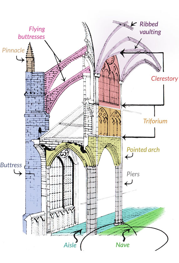 The basic components of Gothic Architecture and the Gothic Cathedral. Pointed Arches, Flying Buttresses and Ribbed (Fan) Vaults were the main components that allowed for tall and light looking structures.