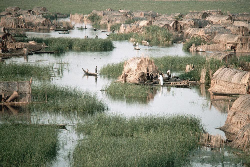 Nomadic Hunter-Gatherer Marsh Huts