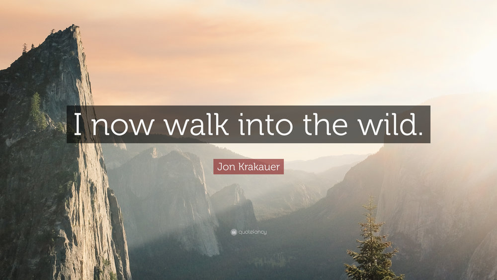 into-the-wild-quotes-images-jon-krakauer-quote-i-now-walk-into-the-wild-10-wallpapers-1.jpg