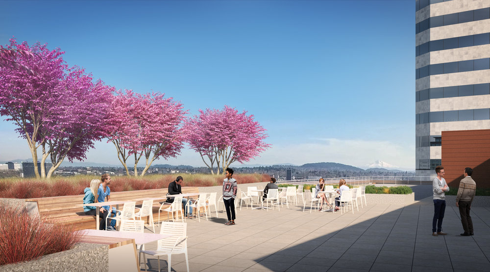Portland's Largest Rooftop Terrace - 3,800 SF