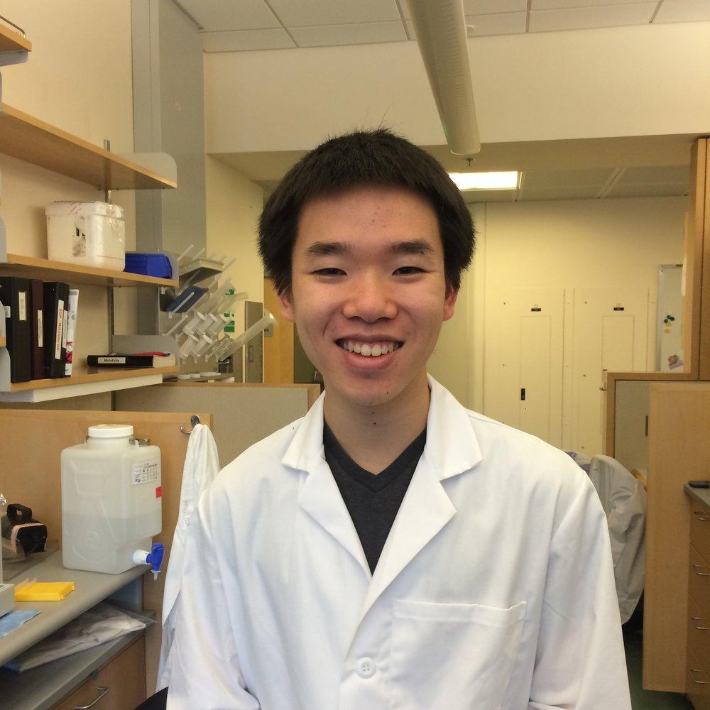 Elliot Chien, UCB undergraduate 2015-2016
