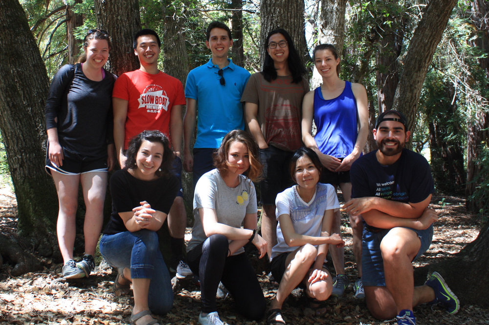 Lab retreat, Huddart Park, July 2017