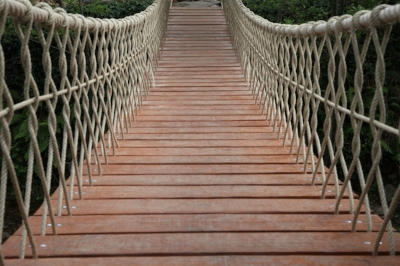 rope hanging bridge.jpg