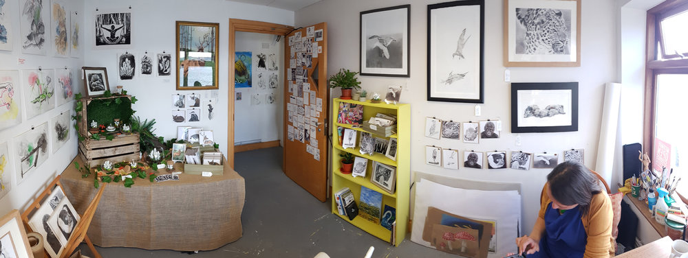 A panorama of my studio all set up and ready for visitors