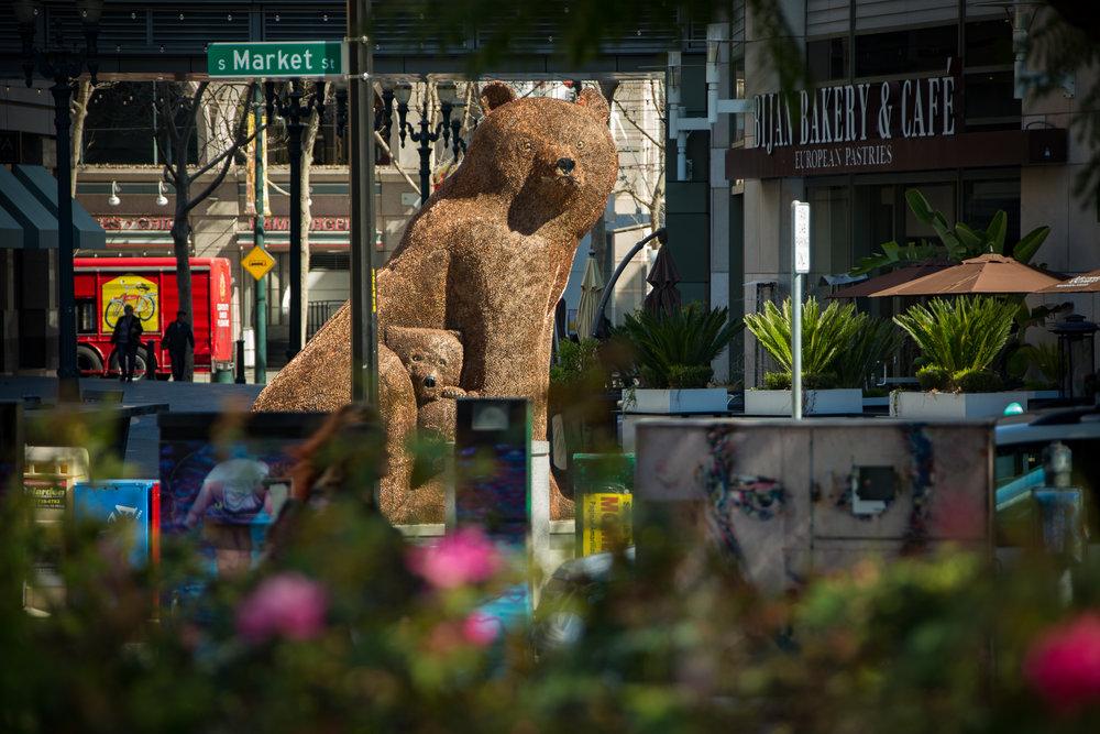 Ursa Mater in downtown San Jose