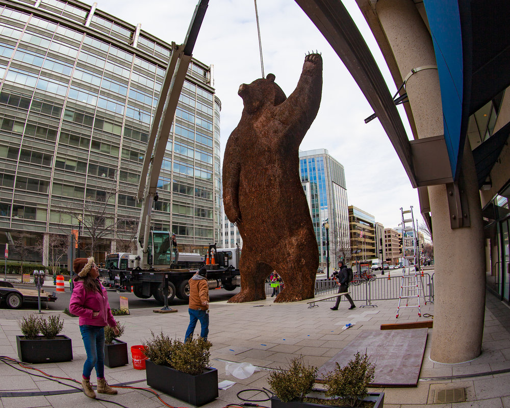 Ursa Major is lifted into her new home in Washington, D.C.