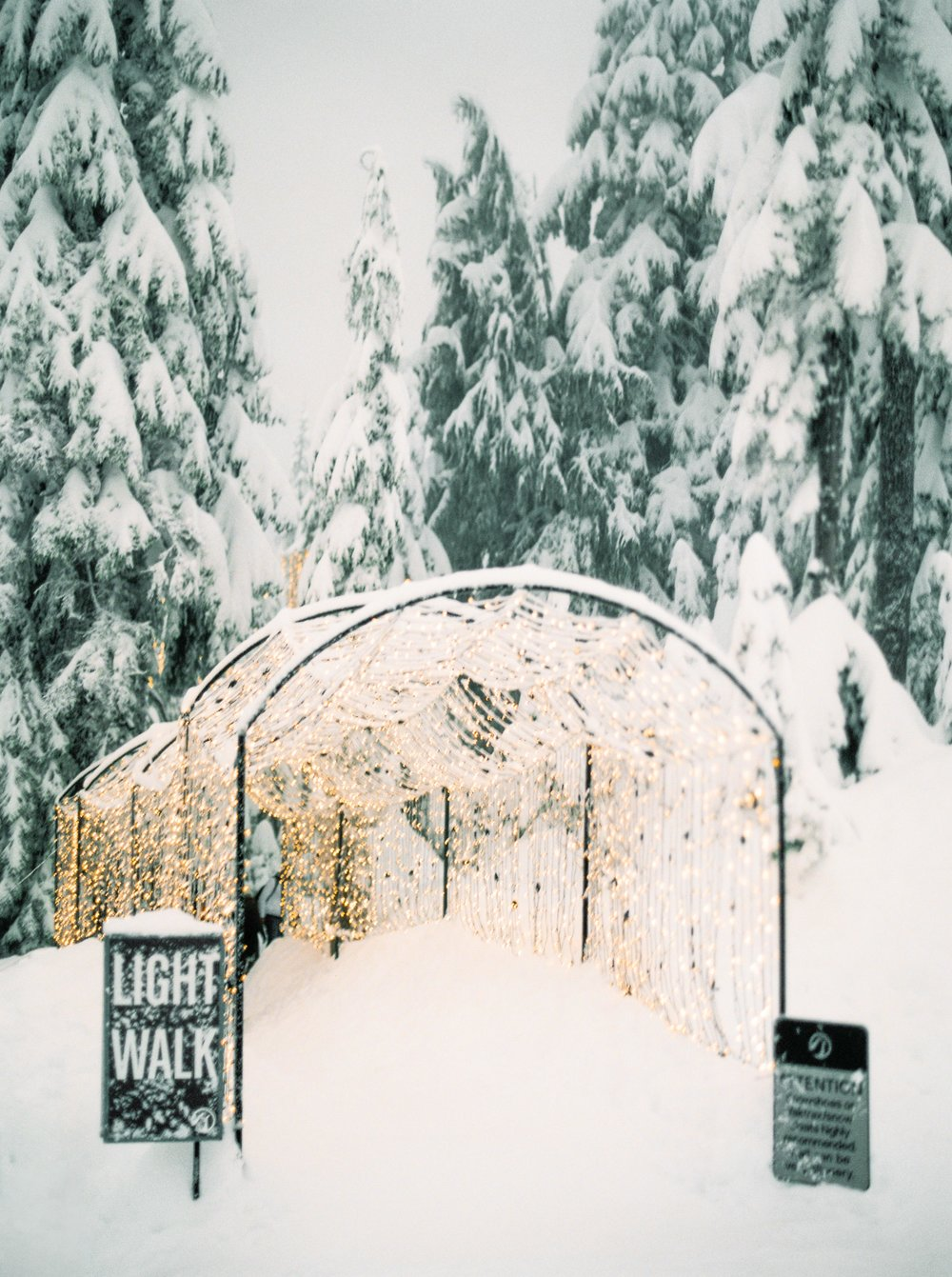 Light Walk Entrance on Grouse Mountain