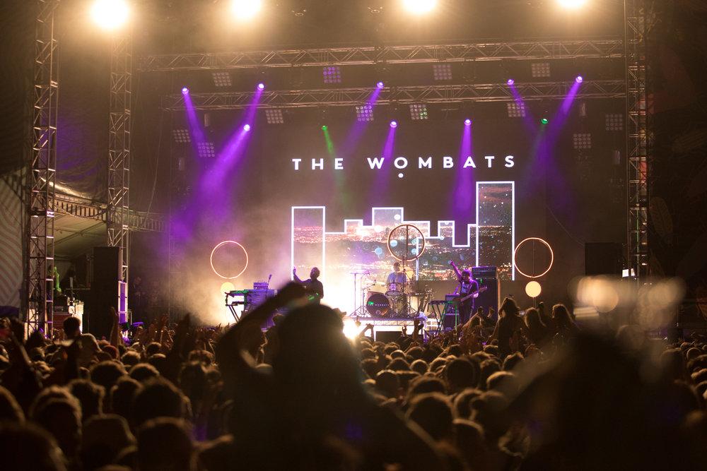 D - The Wombats-9.jpg