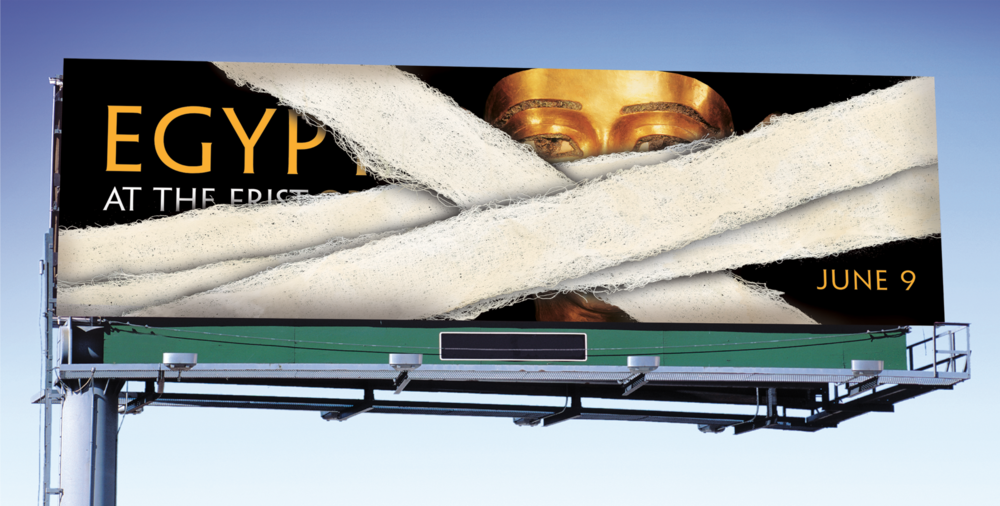 bohan-Frist egypt-billboard-unwrap 2