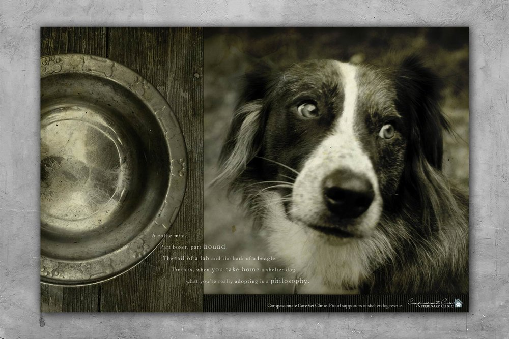 bohan | Compassionate Care Veterinary Clinic print