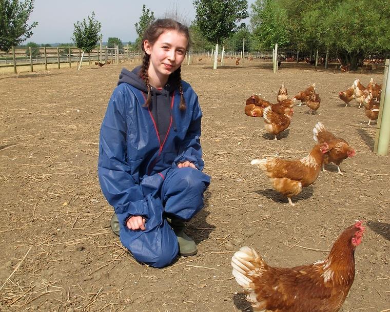 Photo: farminguk.com