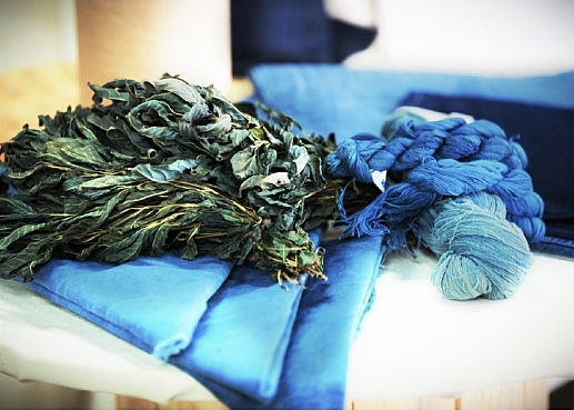 Stony Creek Colors has contracted with local farmers to grow natural indigo.