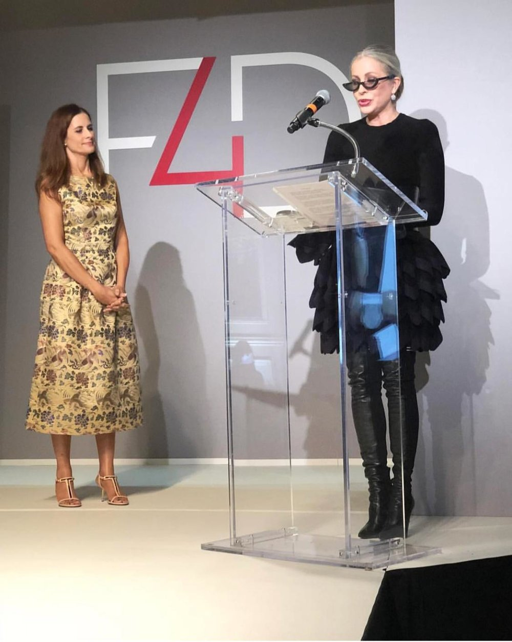 Carmen delivering her award acceptance speech at yesterday's Fashion 4 Development Luncheon in NYC.