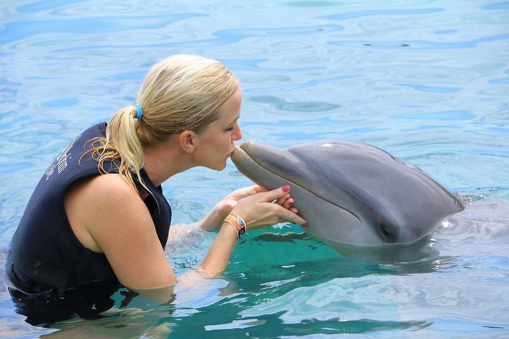 Swimming with the dolphins on a vacation in Jamaica.  -Angie J., Iowa