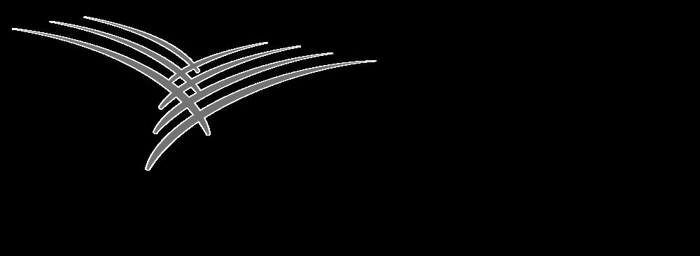 Cardinal-Health-Logo copy.png