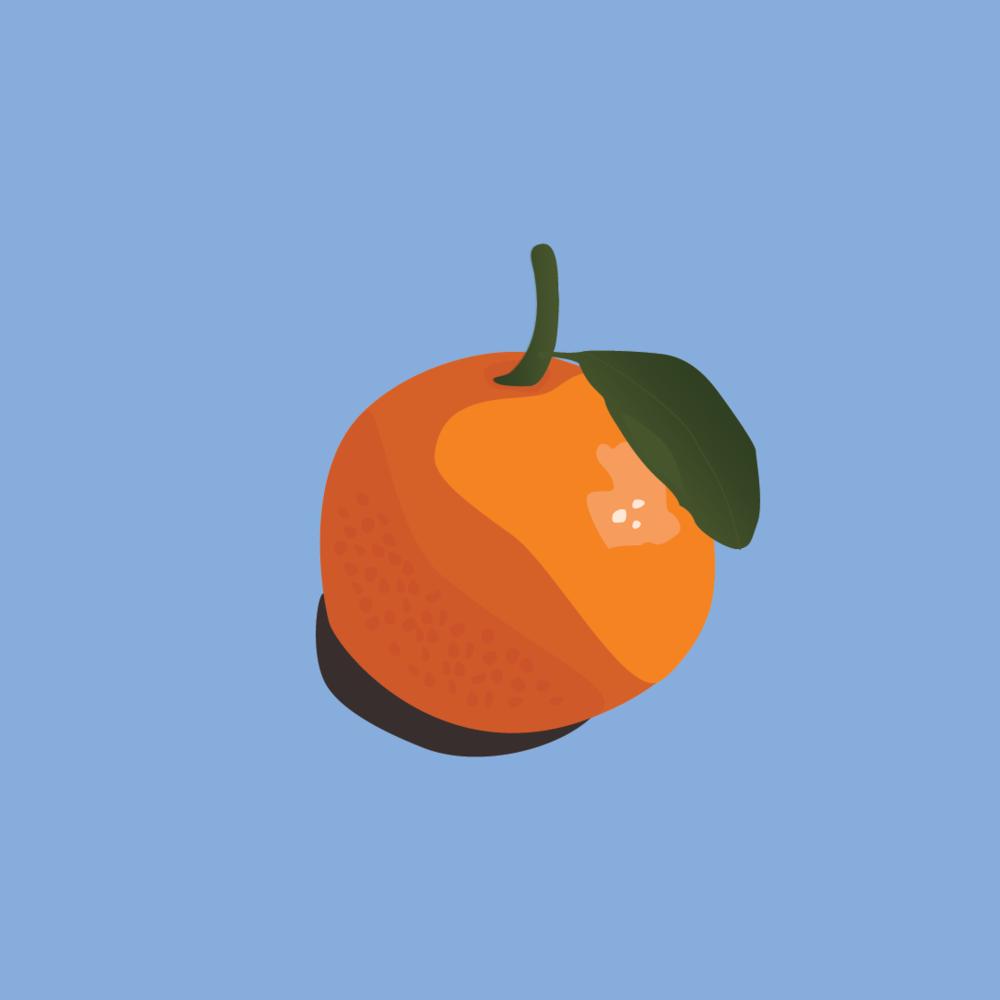 orange1-16.png