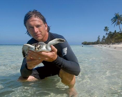 Wallace-Nichols-green-sea-turtle-Neil-Ever-Osborne-570x375.jpg