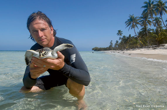 Join the Wallace J. Nichols Sea Turtle expedition