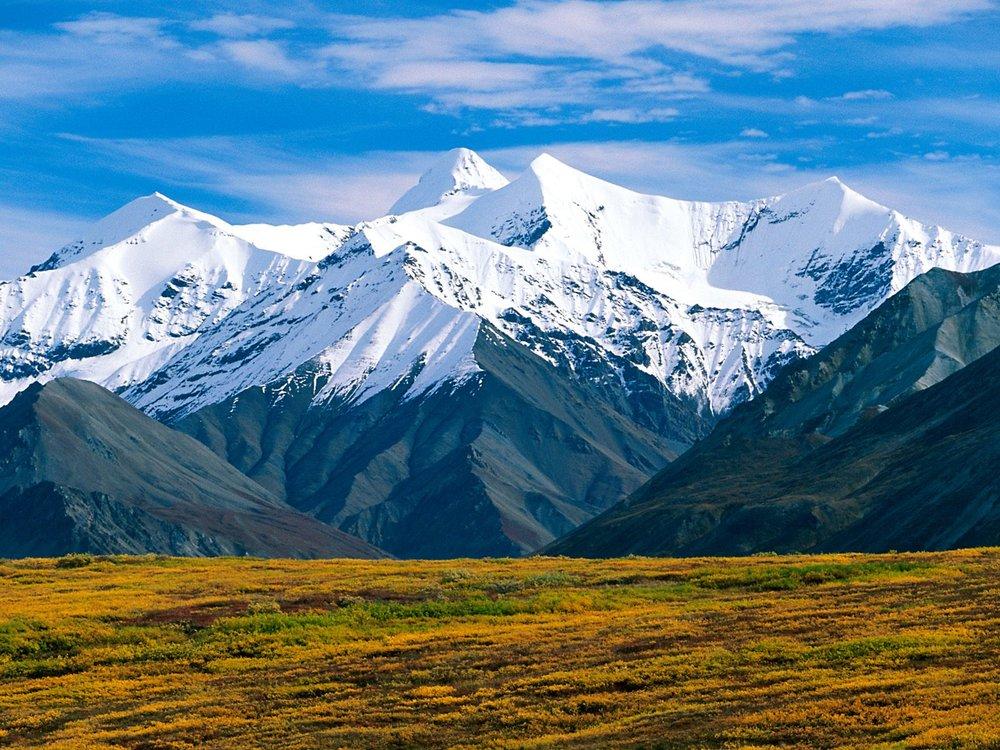 4201323-denali-national-park-alaska-normal.jpg