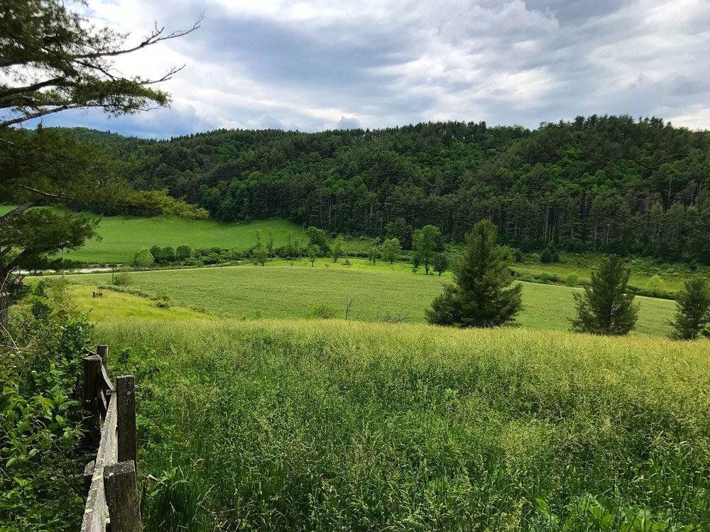 Beautiful rolling pastures.