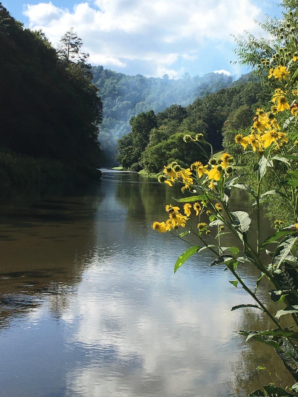 Dec 4th summer river.JPG