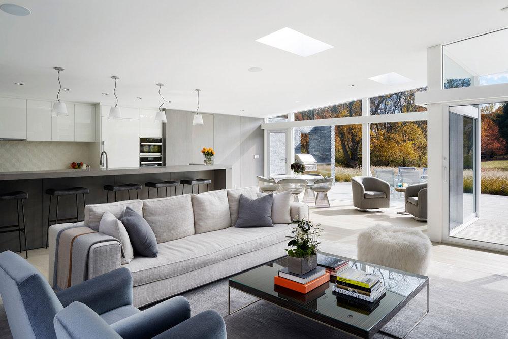 Living & Kitchen - Mid-century Modern House