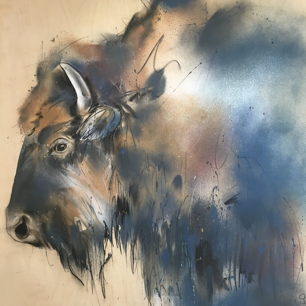 Bison , Original spray paint & charcoal on birch ply, 100 x 95 cm