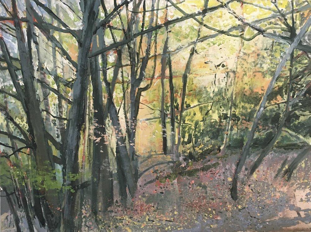 Highgate Wood, Acrylic on canvas, 23 x 30 cm, £300