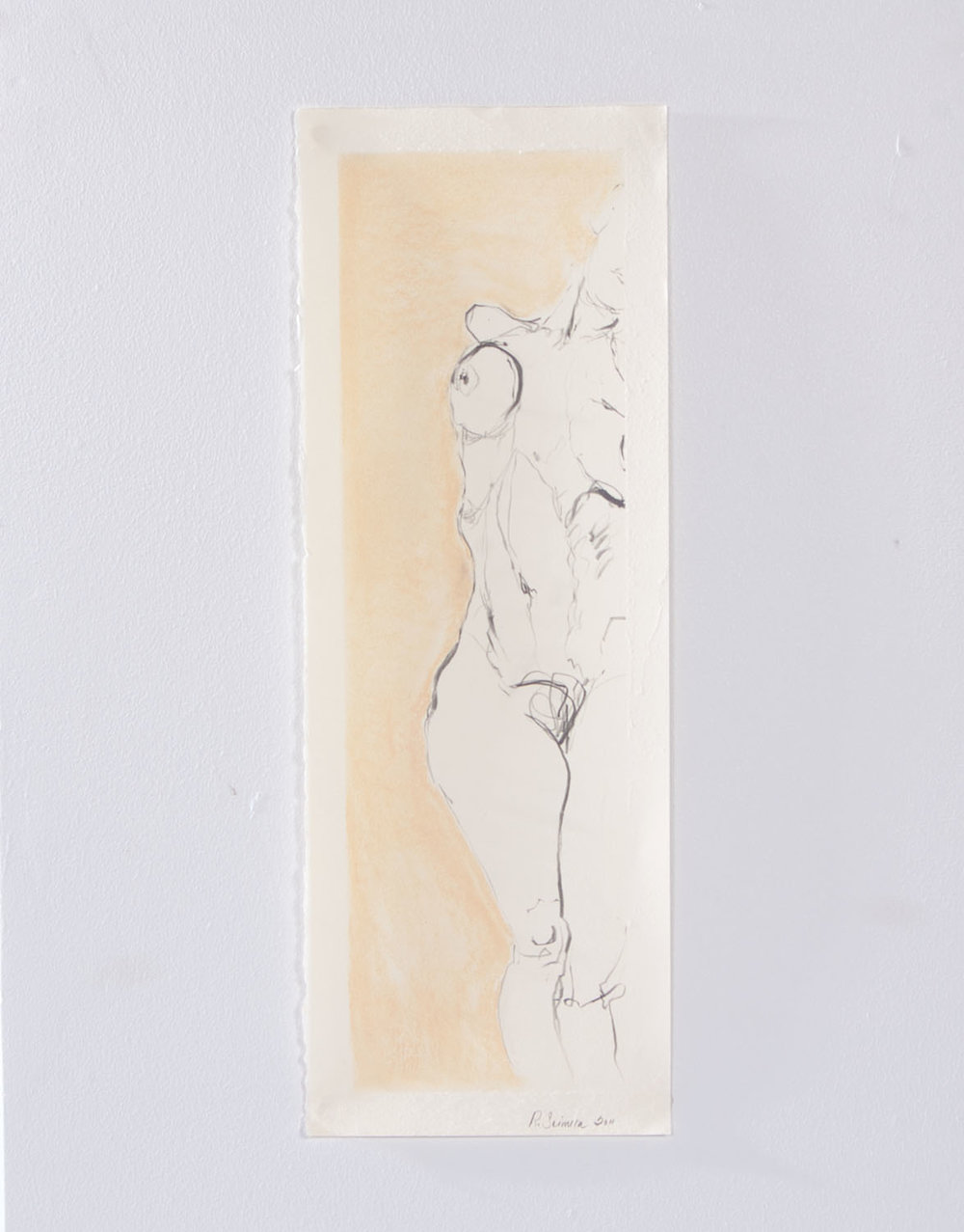 """Collapse, 2012, Graphite and pastel on paper, 19"""" x 7"""""""